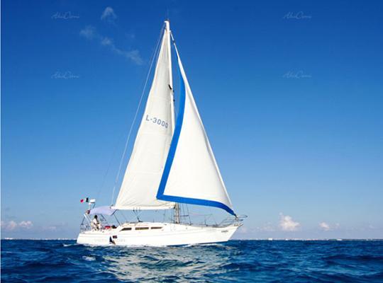 12912_catamaran-40-special.jpg