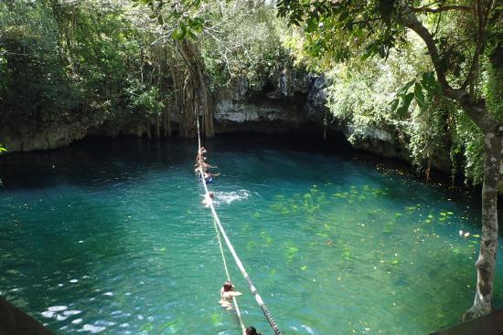 91058_selvatica-cenote-swim.jpg