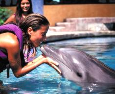 9151_watersports-cancun-interactiveacuarium5.jpg