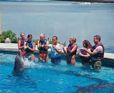 94771_watersports-cancun-interactiveacuarium2.jpg