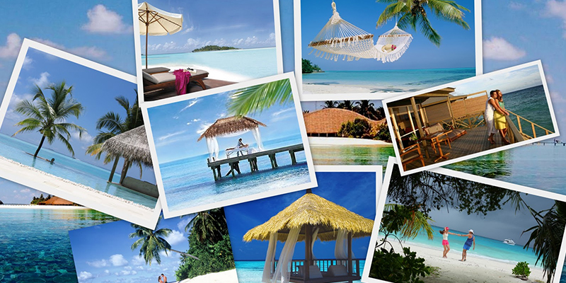 Travel Agents For Honeymoon Packages In India